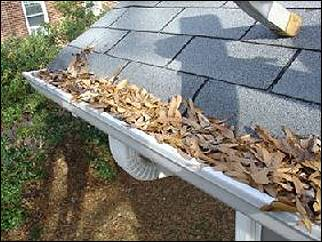 Gutter Cleaning Needed!